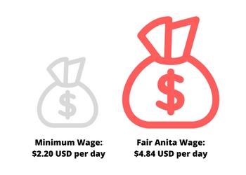 egypt-final-wage.jpg